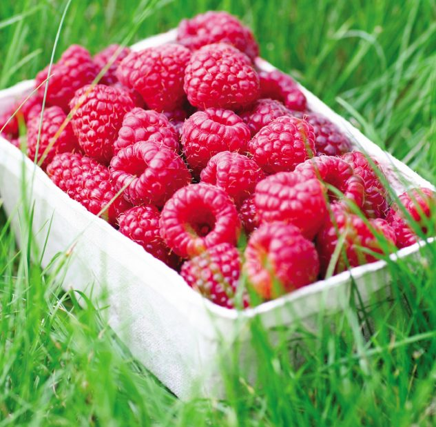 whole fruit, raspberries