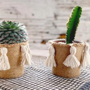 Succulent and cati in twine wrapped pottle